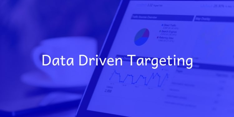 bluehubs-digital-marketing-data-driven-targeting
